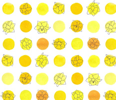 polka daffodils