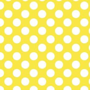 polka dots yellow