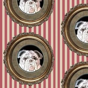 english bulldog fabric - with stripes