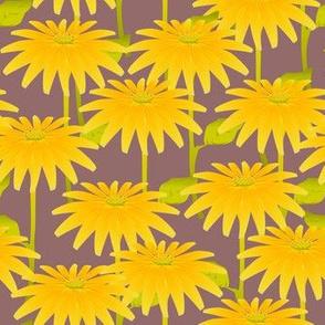 YELLOW FLOWER mauve