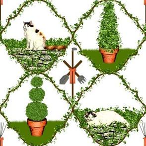 Cat Nip Cat Nap Garden ~ White