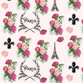 Paris Roses on Pink