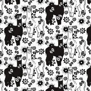 Alpaca Black and White Animal Fabric