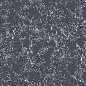 peonies grey white drawing