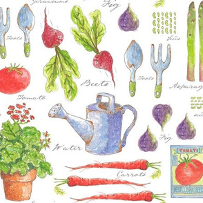 My Garden Sketchbook