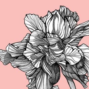 HibiscusLine_Fabric_onBlossom