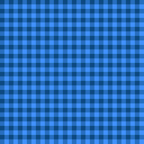 pajama blue gingham