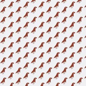 Hello Birdy (original)