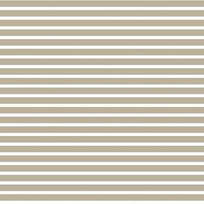 Small Grey Stripes