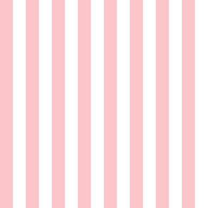 Pink & White Stripe | Half-Inch Wide Stripes