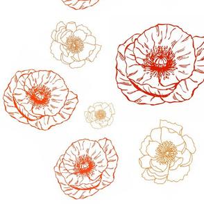 Red & Orange Poppies