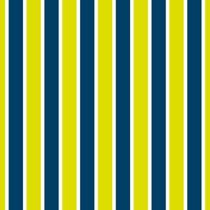 01993394 : pinstripe : synergy0001