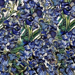 Van Gogh's Purple Irises | Violet Flowers