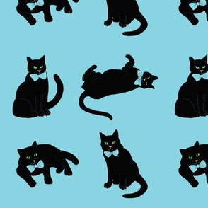 Black cats on blue