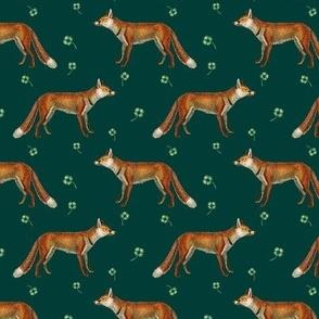 Mr Fox on Hunter Green