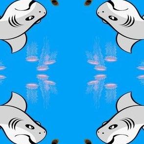 SharkQB