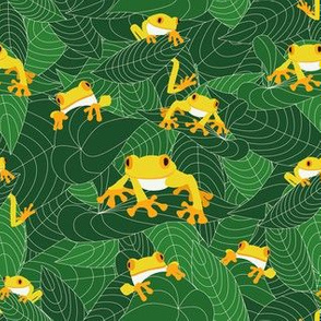 the-jungle-of-the-frogs