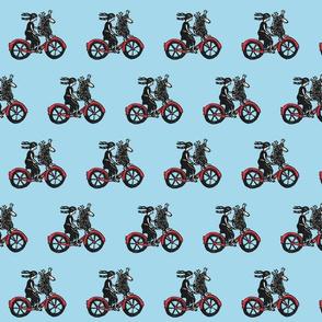 henry_rides_a_bike_light_blue_largejpg