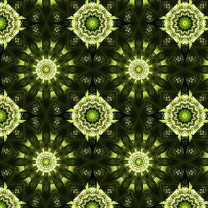 Kaleidoscope 9 - Green Mojo