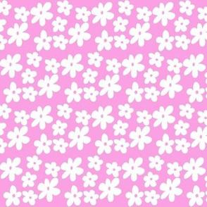 Bright Pink Daisy Flowers