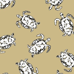Turtle Scatter