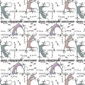 Adam's Lizards
