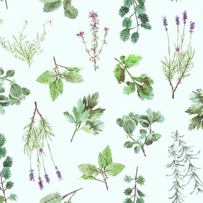 Watercolor Herb Garden