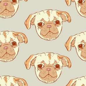 Pug Puppy | Grey Background