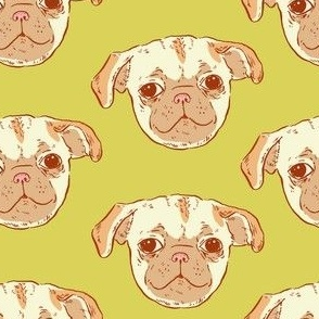 Pug Puppy | Green-Gold Background