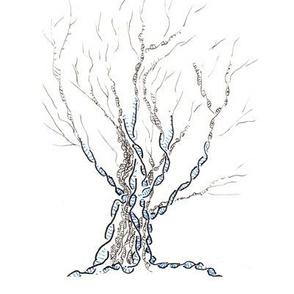 little gene tree