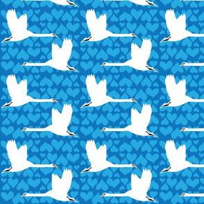Swan - Blue