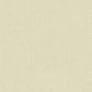 seamless pale burlap texture