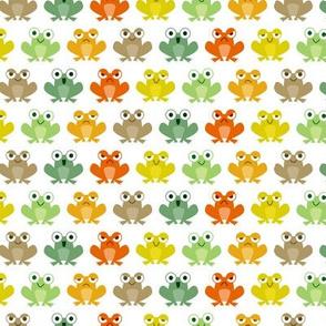 Cute little frogs