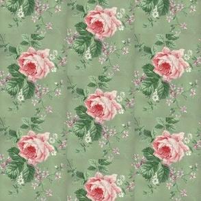 Cottage Roses