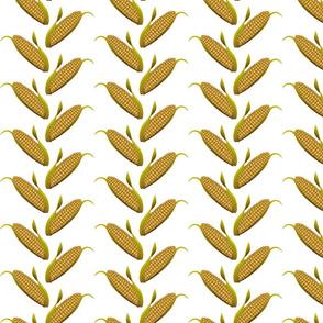Ears of Corn on White