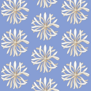 chrysanthemum on blue