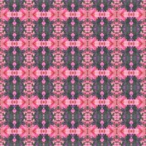 Spring Pinks Wow