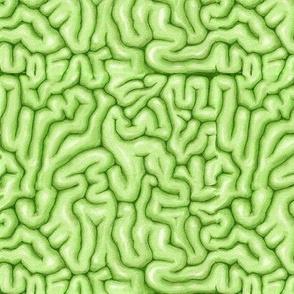 Green Brains
