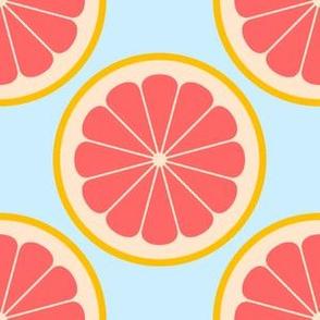 02141174 : citrus slices R4X : grapefruit