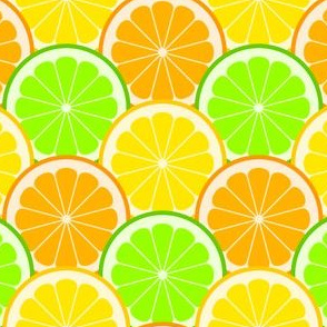 02143987 : citrus scales R6 : fruity