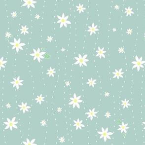 Popupflowers