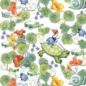 underbrush turtle riding