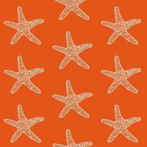SeaStar on Orange