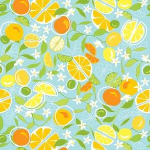 Citrus Squeeze