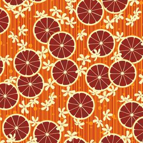 Blood Orange Allegria