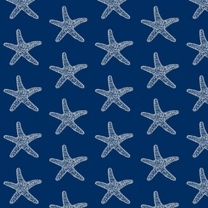 SeaStar on Navy