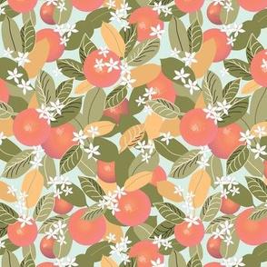 Citrus Abundance 3 Pink Fruit