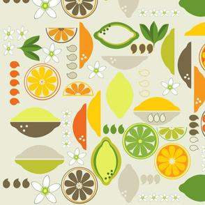 Citrus Fruits deco