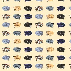 Kitty Fabric