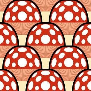 02184519 : fungi 1x